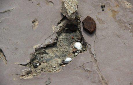 """""""צלול"""" וארגוני סביבה: הגיע הזמן לאכוף את החוק על בעלי הקרקע במפרץ עכו"""