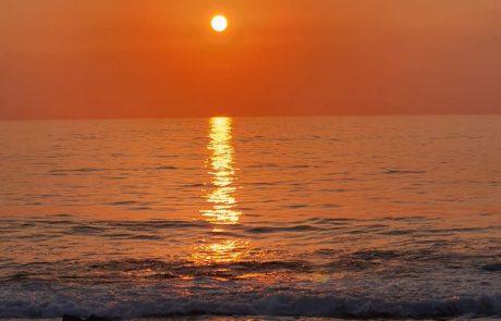 """אזרחים ותיקים: """"הים הוא כמו חמצן לריאות"""""""